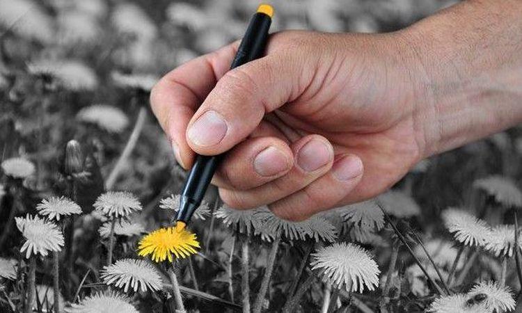 Радуга жизни: как раскрасить свою жизнь