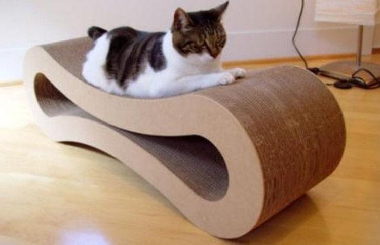 Как заработать на изготовлении мебели для домашних питомцев