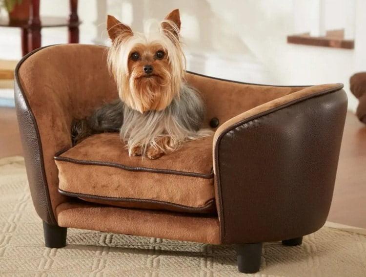 Мебель для собаки